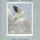 snowgoose_illus
