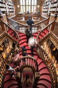 Ivo Rainha_Livraria Lello_escadas