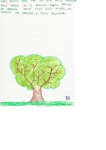 alberi25