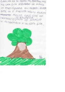 alberi26